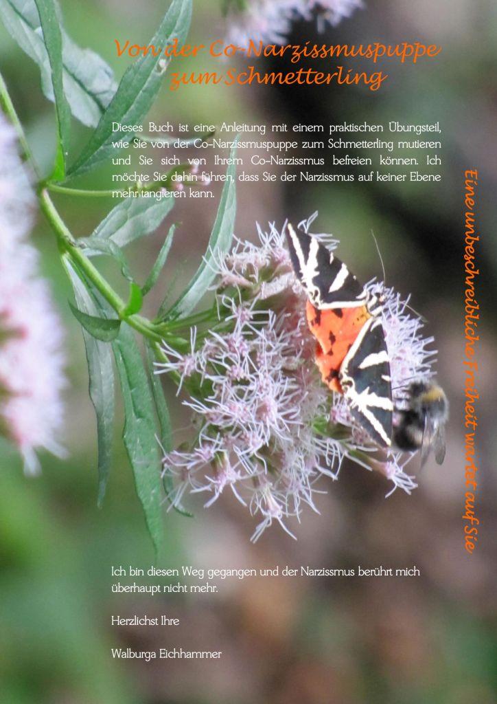 Titelseite Von der Co-Narzissmuspuppe zum Schmetterling